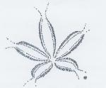 fleur stylisée.JPG